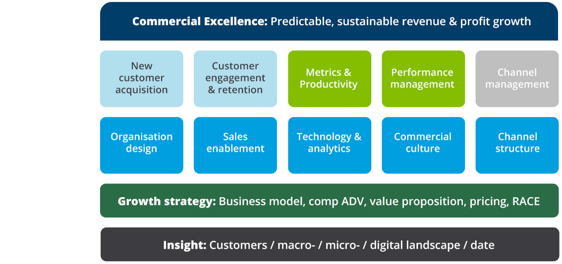 Commercial Excellence: Predictable, sustainable revenue & profit growth